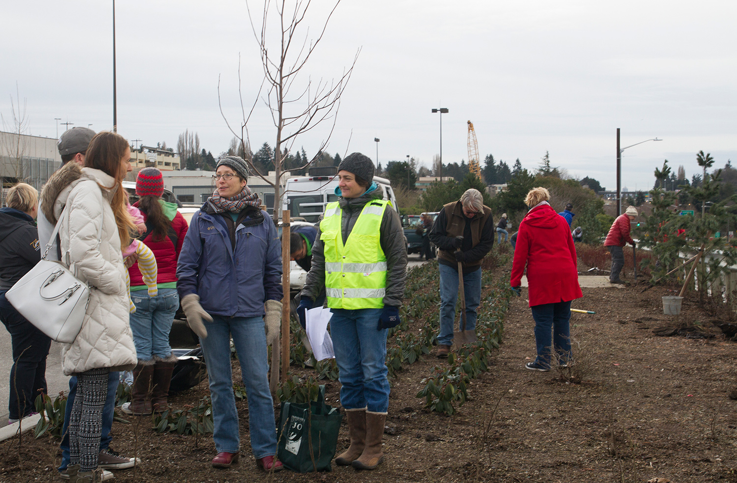 Sound Transit hosted a plant salvage at the site of the future Northgate Station on Jan. 7