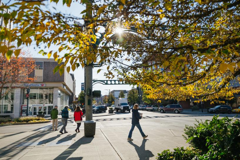 People walk down a sidewalk past trees in downtown Everett.