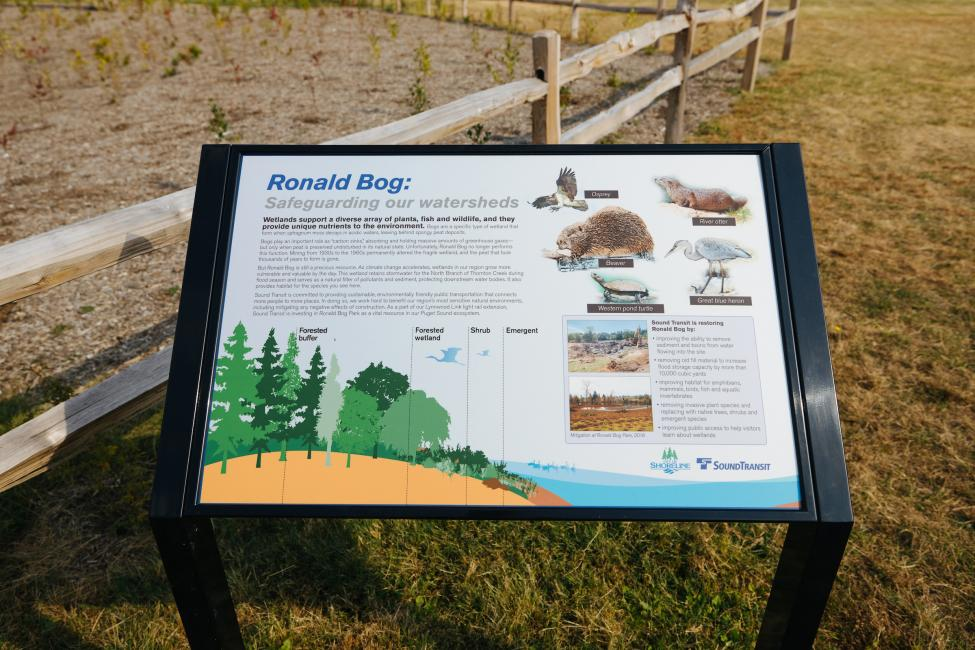 A colorful sign reads 'Ronald Bog: safeguarding our watersheds' with other text and images of wildlife including a beaver, river otter and great blue heron.
